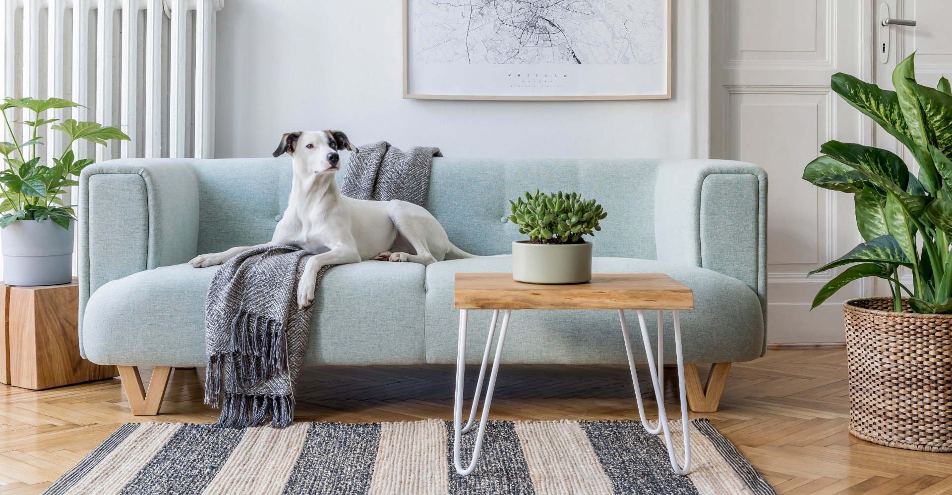 home remodeling trends bay area